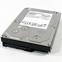 Hitachi Deskstar E7K1000 1 Terabyte (1TB) SATA/300 7200RPM 32MB Hard Drive