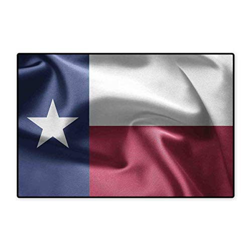 (Western Decor Bath Mats for Floors State of Texas Flag Star Freedom Symbol Silk Fabric Surging by Wind Blow Looking Customize Door mats for Home Mat 24