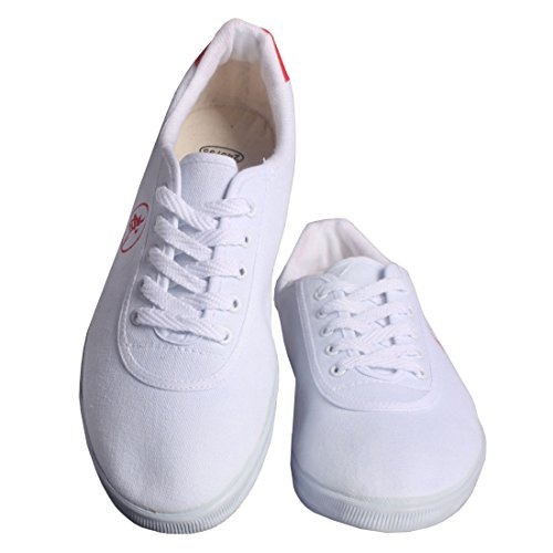 Andux artes marcial Kung Fu Tai Chi zapatos de Dichotomanthes Sole Old Beijing Unisex Zapatos TJX-01 Blanco Blanco