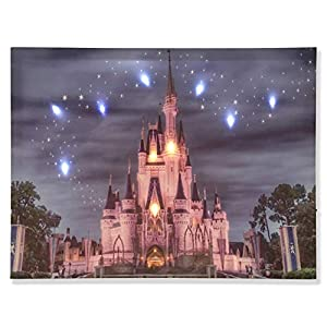Lighted Disney Castle Wall Art- Canvas Prints for Home Decoration 9 LED Lights 1 x16 Inch-0902RZ