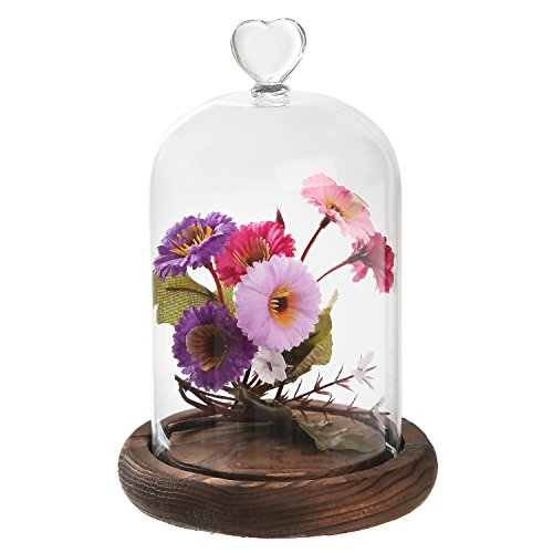 7 inch Mini Clear Glass & Wood Cloche Bell Jar Centerpiece / Tabletop Display Case w/ Heart Handle - Glass Wood Candle