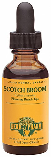 Herb Pharm Scotch Broom Extract - 1 Ounce