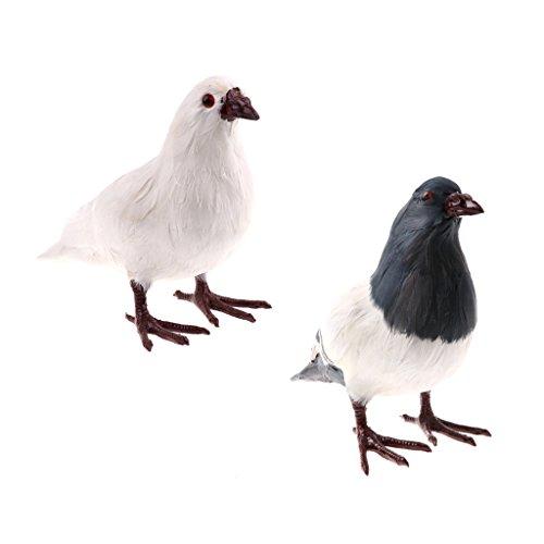 Kesoto 子供 動物モデルおもちゃ 鳩モデル 動物模型 認知 教育おもちゃ 2点