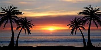 CUSTOM sunrise palm tree LICENCE plate ADD any name
