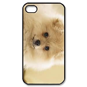 IMISSU Pomeranian Phone Case for iPhone 4/4S