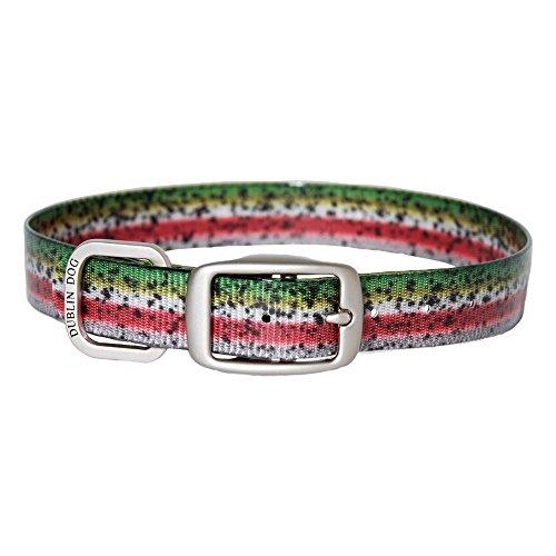 (Dublin Dog 67937 KOA Fish Rainbow Trout Dog Collar, Large/X-Large )