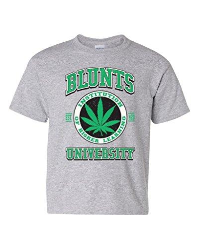 artix-blunts-university-higher-education-unisex-youth-t-shirt-tee-youth-small-sport-grey