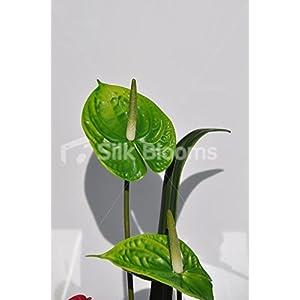 Artificial Anthurium Flowers