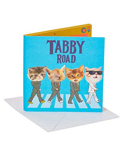 Birthday Cat Card Greeting (American Greetings The Beatles Tabby Road Birthday Greeting Card with Music)