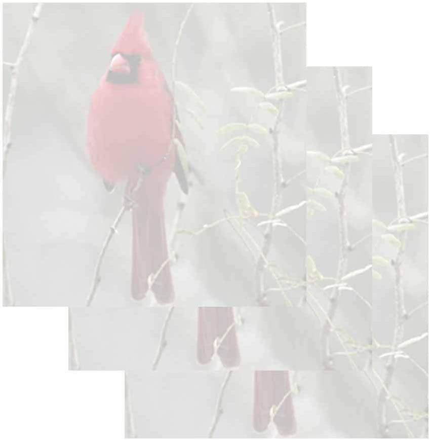Red Cardinal Sticky Notes - Set of 3 - Wildlife Bird Nature Theme Design - Stationery Gift - Paper Memo Pad - Office Business School Supplies