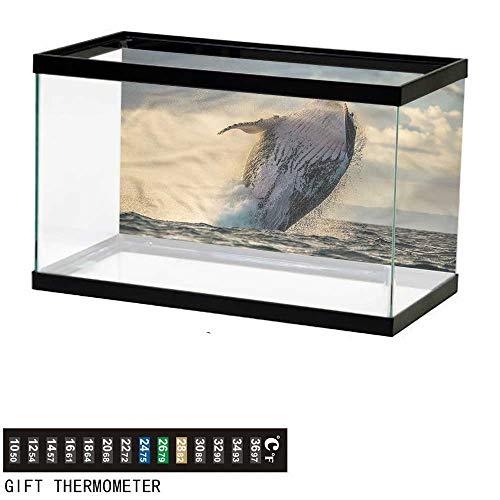 Suchashome Fish Tank Backdrop Whale,Island Wildlife Exotic Marine,Aquarium Background,48