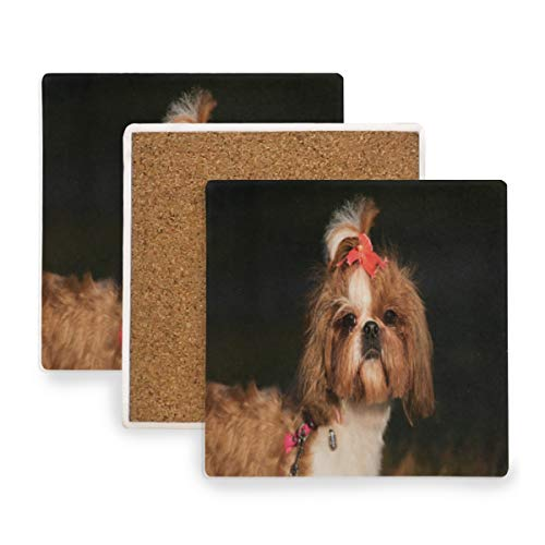 Puppy Outdoors Coasters, Protection for Granite, Glass, Soapstone, Sandstone, Marble, Stone Table - Perfect Cork Coasters,Square Cup Mat Pad for Home, Kitchen or Bar 1 Piece -