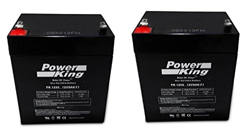 Set of 2 Razor E175 12 Volt 5.5 AmpH SLA Replacement Scooter Batteries