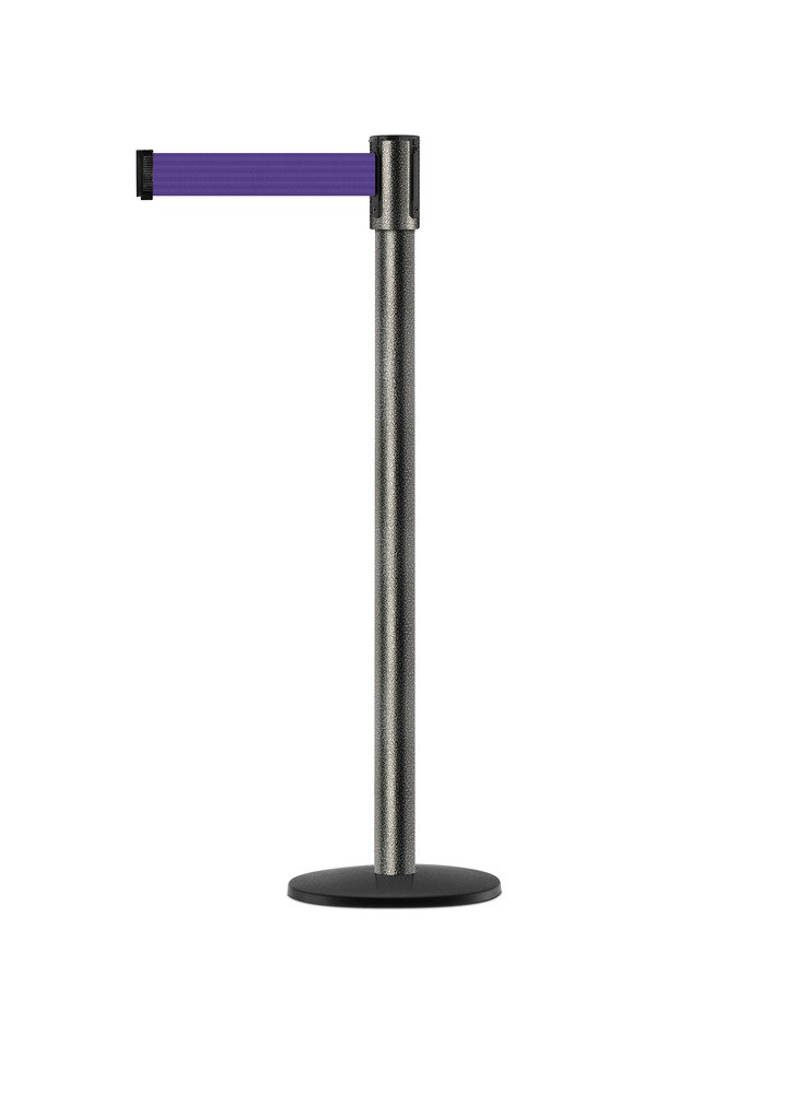 Tensabarrier - 890B-33-64-64-STD-NO-P5X-C - silver vein post, 2'' wide, 7'6'' length Purple belt