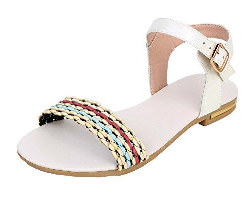 AalarDom Women's PU Open Toe Low-Heels Buckle Assorted