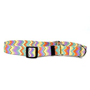 Yellow Dog Design Chevy Stripe 20-Inch Martingale Collar, Medium, Multicolor