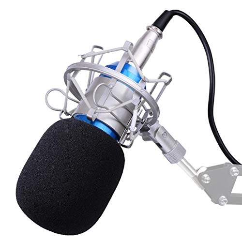 Professional USB Condenser Microphone Bundle,BM800 XLR 3 Pin Mic Kit/With Adjustable Boom Scissor Arm Stand,Shock Mount,Pop Filter USB Audio Cable For Computer Youtube Singing Studio Recording /& Bro