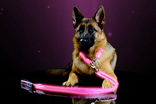 Pet Industries Premium LED Reflective Dog Leash, USB Rechargeable, Available in 6 colors(Cherry Blossom Pink)