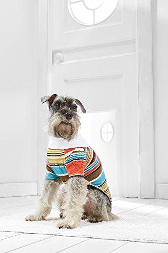 [Small Dog Striped T Shirt For Mini Schnauzer Yorkie Dachshund Havanese Bichon Frise (Small Size, white,] (Mini Dachshund Halloween Costumes)