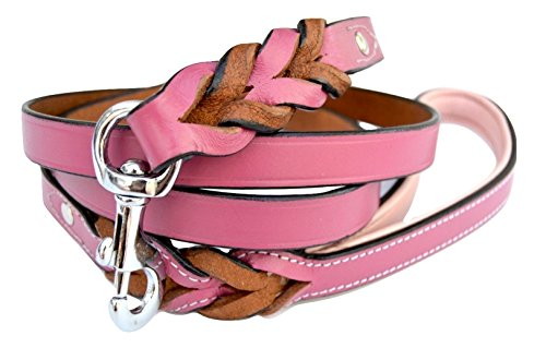 Pink Leather Leash - Soft Touch Collars Raspberry Pink Leather Braided Dog Leash, 6 Foot x 3/4 inch, Walking or Training Lead for Large and Medium Size Dogs