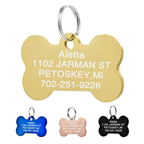 Amlion Personalized Engraved Dog Tags, Custom Dog Cats Tags, Stainless Steel Pet Id Tags, Double-Sided Engraved, Bone, Rectangle, Round, Heart Shape(5 Colors) (Regular Bone, Gold)