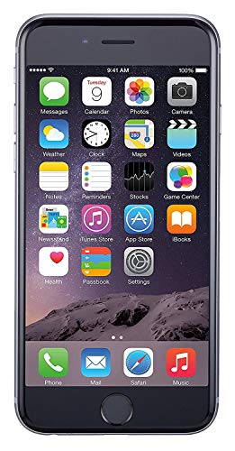 Apple iPhone 6 Factory Unlocked 4G LTE Smartphone (Space Grey, 16GB) Bundle with A-Cell Cloth & A-Cell Headphones (Refurbished)