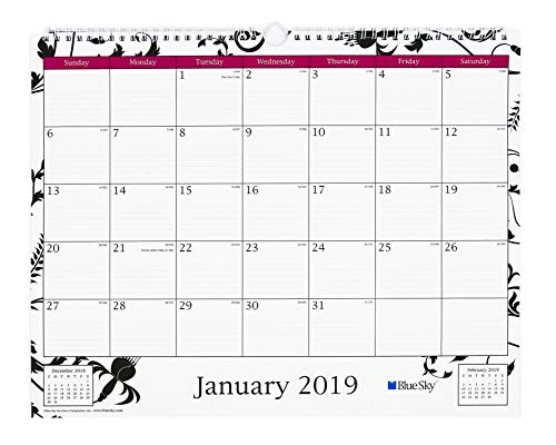 Blue Sky 2019 Monthly Wall Calendar, Twin Wire Binding, Ruled Blocks, 15