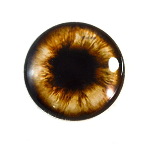 - 25mm Single Brown Teddy Bear Glass Eye for Taxidermy Sculptures or Jewelry Making Crafts
