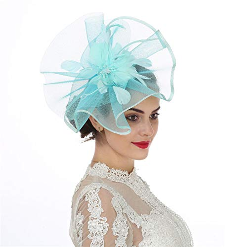 SAFERIN Fascinator Hat Feather Mesh Net Veil Tea Garden Party Hat Flower Derby Hat with Clip and Hairband for Women (TA1-Sky -