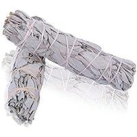 Native-spirit Batonnets de Sauge Blanche - - batons/empaqueter/Ballot/Encens White Sage 2 x Small Smudge 4-4.5'' (~12cm~20gr.)