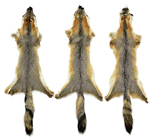 Professionally Tanned Grey Fox Fur Pelt with Face and Tail 36