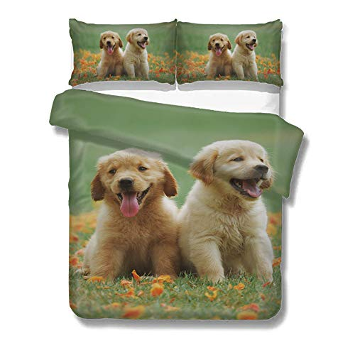Pealrich Duvet Cover Golden Retriever Two Puppies Happy Fun Grass Home Bedding Duvet Cover Set Bed Sheets Set Soft Comfortable Breathable Queen Size ()