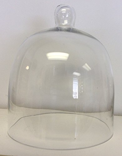 Glass Bell Dome Jar 8