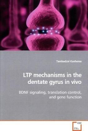 LTP mechanisms in the dentate gyrus in vivo: Amazon.es ...