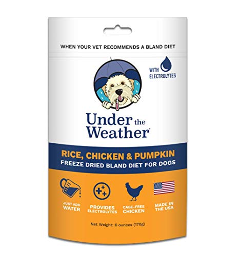 Under the Weather Pets | Rice, Chicken & Pumpkin | Easy to Digest Bland Dog Food Diet for Sick Dogs Sensitive Stomachs - Contains Electrolytes - Gluten Free, All Natural, Freeze Dried 100% Human Grade