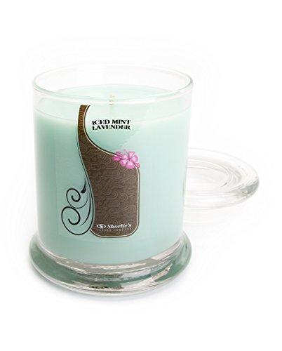 Iced Mint Lavender Candle - Medium Mint 10 Oz. Highly Scented Jar Candle - Made with Essential & Natural Oils - Fresh & Clean Collection
