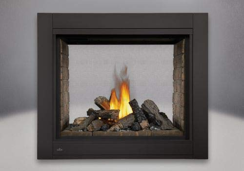 Ascent DV Multi-View See-Thru NG Fireplace with Panels