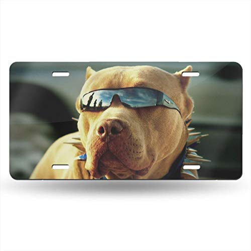 Dunpaiaa Pitbull with Sunglasses Automobile (6X12) Front License Plate License/Vanity Plate ()