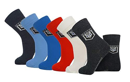 Team Magnus 3-pack exclusive wool socks, extremely thin & warm socks 80% wool (grey, womens 5-8)