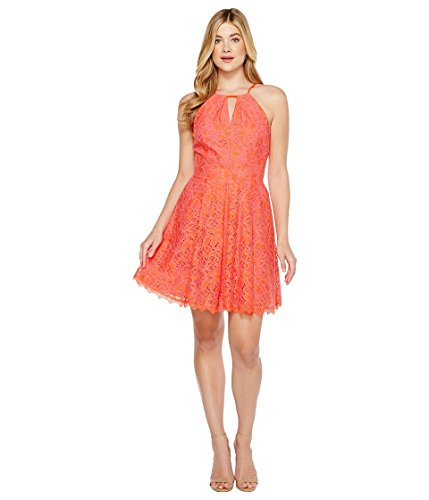 Lace Hot Flare Womens Dress Adelyn Rae Renee Fit Orange Pink BHwnqO4q