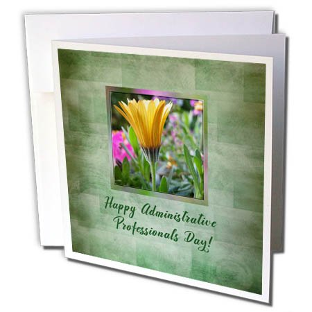 Gerber Daisy Personalized - 3dRose Beverly Turner Administrative Professionals Day - Administrative Professionals Day, Yellow Gerber Daisy in Flower Garden - 12 Greeting Cards with envelopes (gc_282194_2)