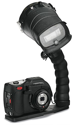 SeaLife DC1400 Pro 14MP HD Underwater Digital Camera with Flash & Flex Arm Bracket by SeaLife
