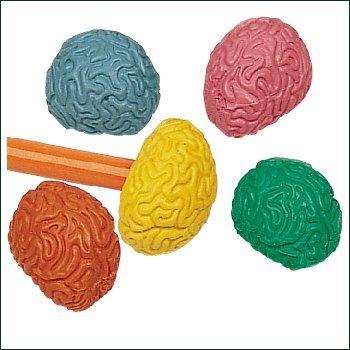 Brain Shaped Pencil Top Erasers – 36 per set