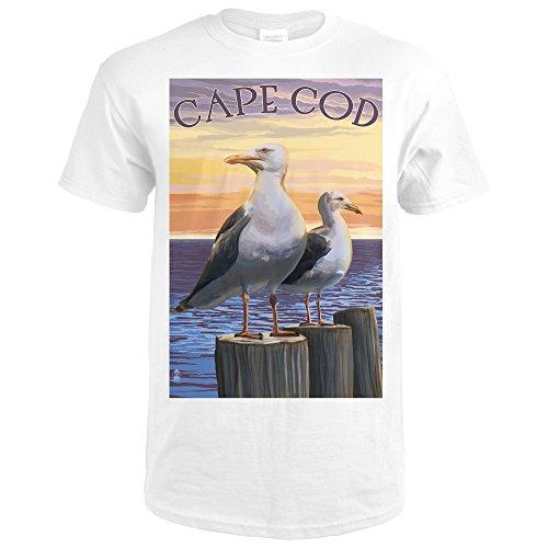 Cape COD, Massachusetts - Seagulls (Premium White T-Shirt XX-Large) (Sea Gull Cape)