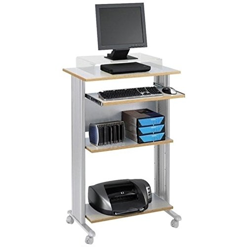 Pemberly Row Standing Computer Cart Workstation in Gray by Pemberly Row