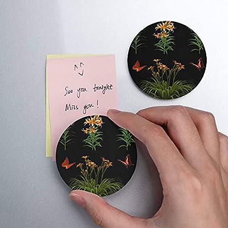 Flores aisladas planta de mariposa Tiger Lily abrebotellas 2 piezas abridor de botellas de cerveza imanes de nevera