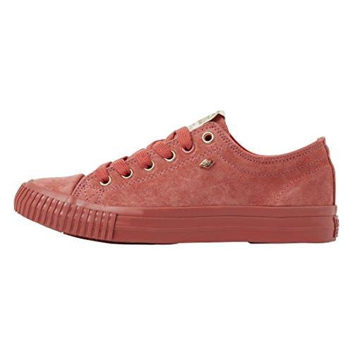 Donne Bassa Sneakers Rosa Corallo British Knights Master Lo qwxpIWFUt