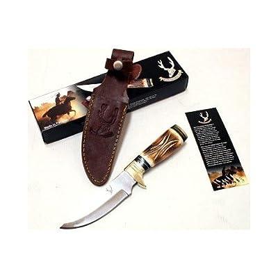9.5' Bone Edge Stainless Steel Hunting Knife with Sheath W5656