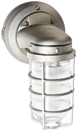 (RAB Lighting VXBR1F26 Vaporproof Wall Bracket CFL Lamp with Clear Prismatic Glass Globe, Triple Type, Aluminum, 26W Power, 1800 Lumens, 277V, 1/2