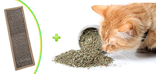 Catnip and Scratch Pad by Cat Crack, Premium Organic Blend Safe for Cats, Infused with Maximum Potency your Kitty is Guaranteed to Go Crazy for!